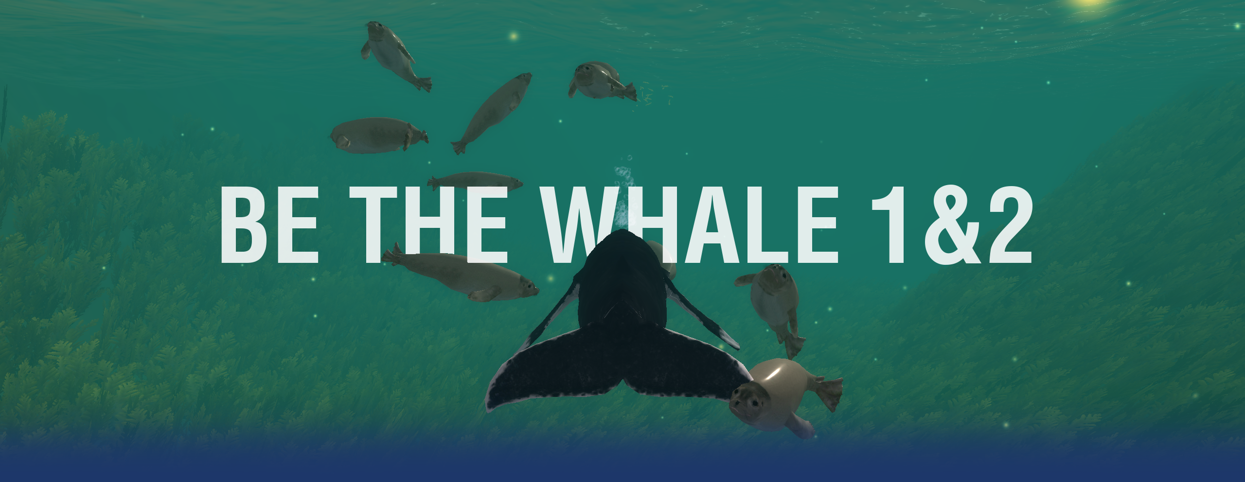 Frontimage_Website_BeTheWhale_ROTxBLAU