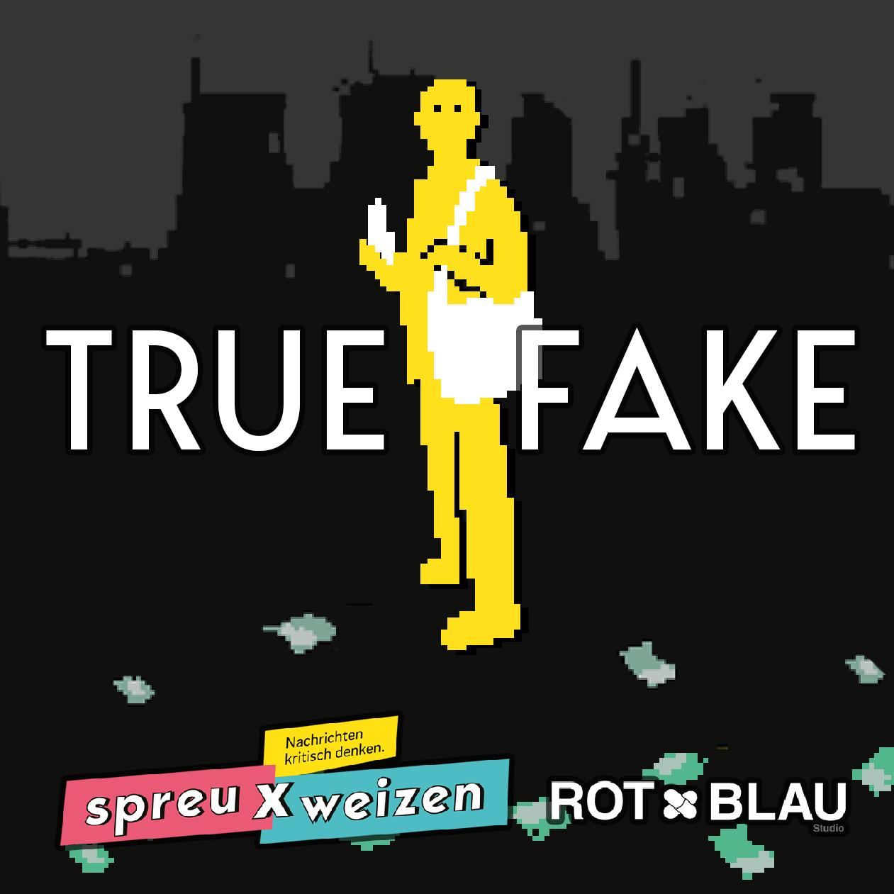 TrueFake_Portfolio_Image